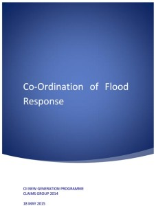 CII's Flood Report
