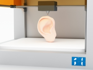 Scientists believe 3-D printers could one day replicate human organs, internal and external, such as this ear. Photo credit belekekin via istockphoto.com.